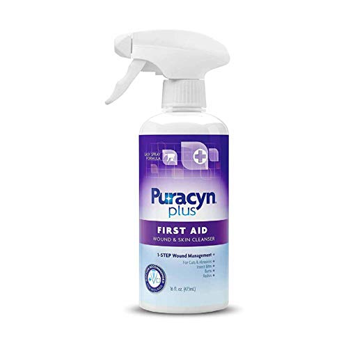 Puracyn Plus Wound and Skin Cleanser – Wound Care Spray for cuts, scrapes, minor sores, minor burns, and other skin irritations – 16-ounce