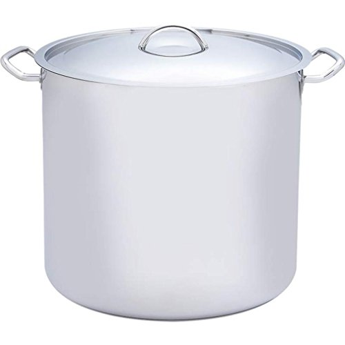 Precise Heat 65 Quart Element Surgical Stainless Steel Stockpot