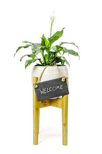 Kudoowa Indoor Plant Stand for Flower Pot Holder - Mid Century Modern Wood Decor - Adjustable Size (8-12' inch pots) Including Small Hanging Chalkboard for Personalized Sign EXCLUDING Planter Pot