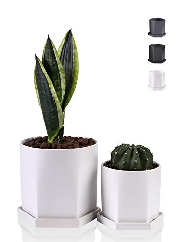 Wencassy Plant Pots - 4.5 + 6 Inch Indoor Ceramic Geometric Planters with Drainage Hole and Tray for Snake Plants, Succulent Planting, The Bottom of Hexagon, Set of 2, Matte White