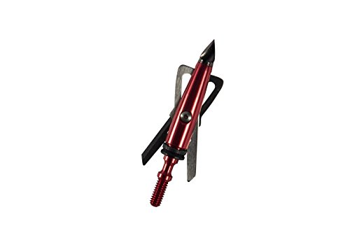 RAGE Chisel Tip 2 Blade Broadhead, 100 Grain with Shock Collar Technology - 3 Pack, Red, Model:65100