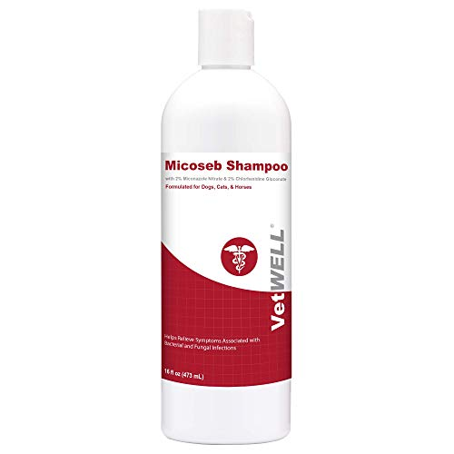 Micoseb Medicated Shampoo for Dogs & Cats - Antifungal Dog Shampoo with Miconazole, Chlorhexidine & Aloe for Fungal & Bacterial Skin Infection Treatment of Yeast, Ringworm, Mange, & Acne - 16 oz