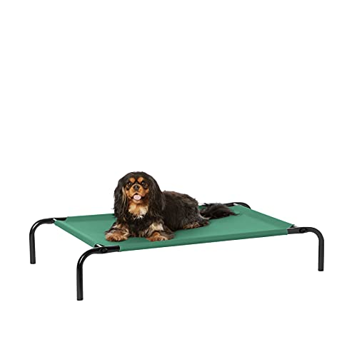 Amazon Basics Cooling Elevated Pet Bed, Small (36 x 22 x 7.5 Inches), Green