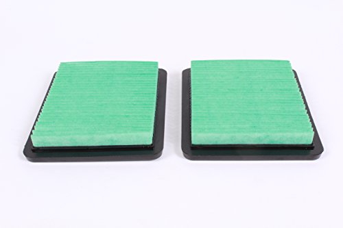 Honda 17211-ZS9-A02 Pack of 2 Air Filter Elements