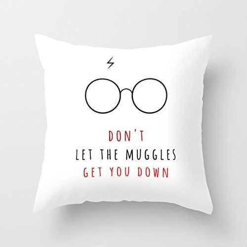 A Better Pillow Don't Let The Muggles Get You Down inspiarations quotes pillow covers home decorative