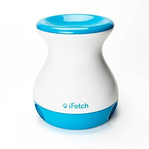 iFetch Frenzy