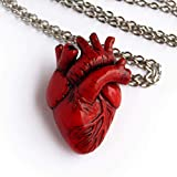 Anatomical Heart Necklace Realistic Red Human Heart Pendant
