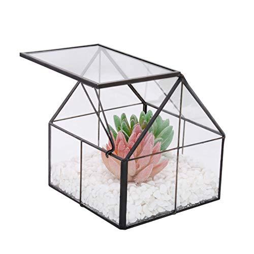 VoiceFly Succulent Terrarium, House Shape Clear Glass Succulent Pot, Tabletop Planter Flower Air Plant Holder Display for Fern Moss, Cactus, Air Plants Holder Miniature Outdoor Fairy Garden DIY Gift