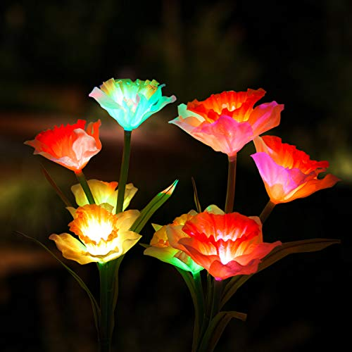 Marcoah Upgraded Solar Flower Lights - Outdoor Waterproof LED Flowers for Garden, Path, Landscape, Patio, and Lawn (Daffodil, White and Orange) - 2 Pack