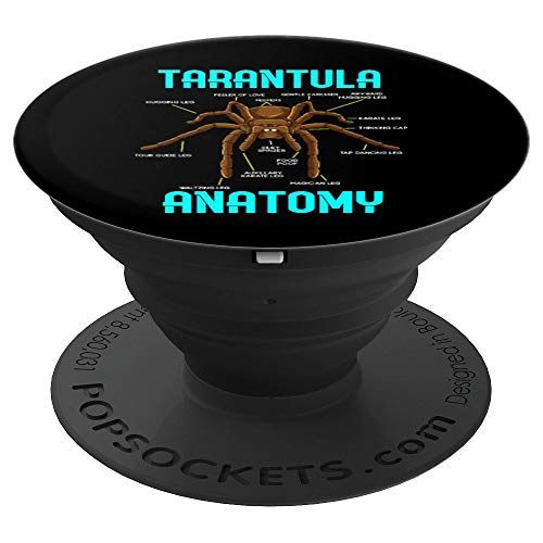 Tarantula Spider Anatomy - Funny Diagram PopSockets Grip and Stand for Phones and Tablets