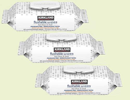 Flushable Wipe- Kirkland Signature Moist Flushable Wipes, 180 Wipes (Pack of 3)