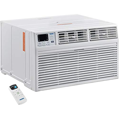 10,000 BTU Through The Wall Air Conditioner, Cool with Heat, 208/230V