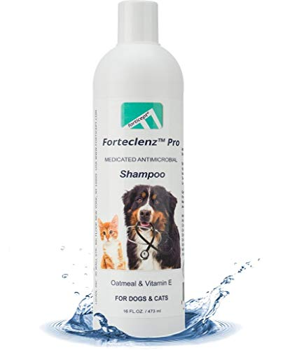 Forteclenz Pro Medicated Antimicrobial Dog Shampoo Oatmeal Vitamin E for Dry Itchy Skin, Antifungal Advanced Formula for itching Smelly Dogs & Cats   Made in USA 16oz