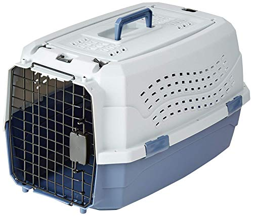 AmazonBasics Two-Door Top-Load Hard-Sided Pet Travel Carrier, 23-Inch