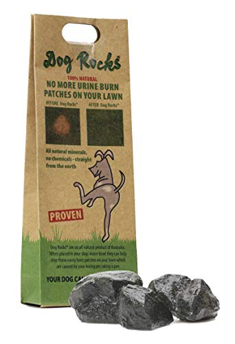 (2 Pack) Dog Rocks Prevent Grass Burn Marks, 4 Month Supply