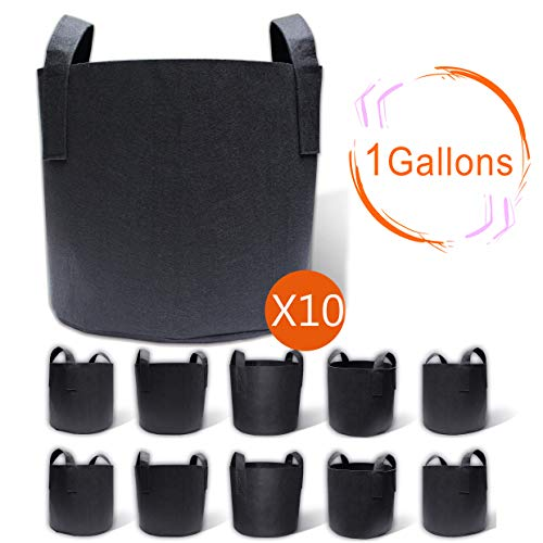 Gardzen 10-Pack 1 Gallon Grow Bags, Aeration Fabric Pots with Handles