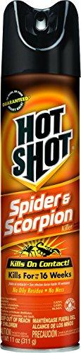 Hot Shot 2-Pack Spider & Scorpion Killer