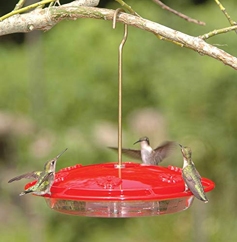 Aspects HummZinger Excel Hanging Hummingbird Feeder with Built in Ant Moat - Item 143
