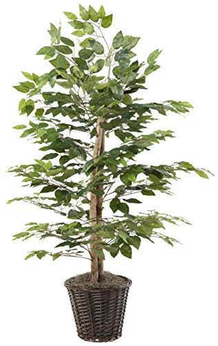 Vickerman Everyday 4' Artificial Ficus Bush Potted in a Rattan Basket - Lifelike Home Office Decor - Faux Indoor Potted Bush