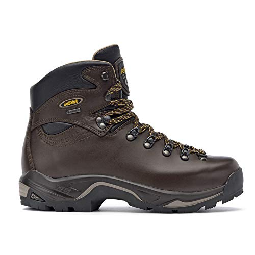 Asolo TPS 520 GV Evo Hiking Boot - Men's - 10.5 - Chestnut