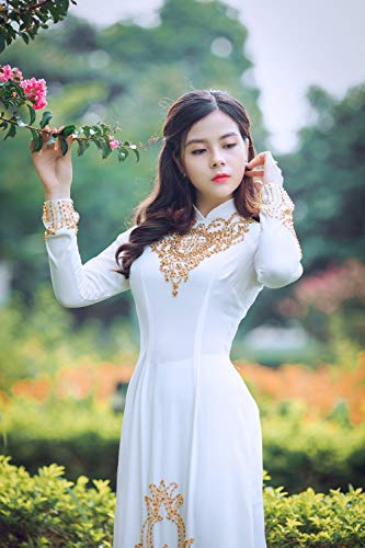 Beautiful Vietnamese Woman in A White Dress - PaintingbyNumbers for Adults or Children