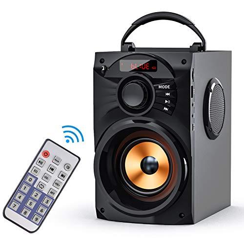 EIFER Portable Bluetooth Speakers Powerfull Tweefer Wireless Speaker Bluetooth 5.0 Rich Woofer TWS Remote Control FM Radio Handles Phone Stand, TF Card/U-Disk/AUX Input Player for Hoom Outdoor BBQ
