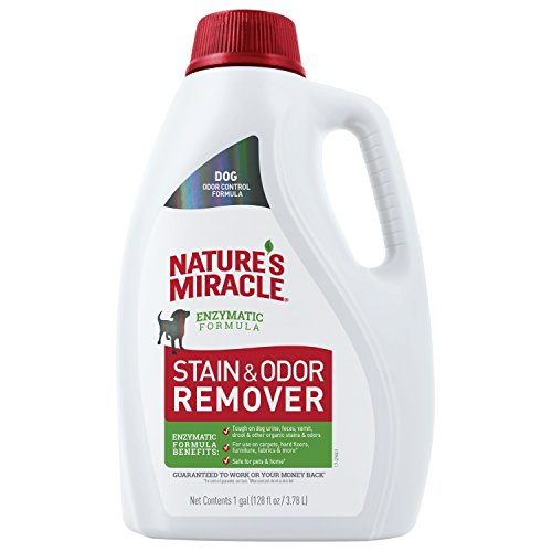 Nature's Miracle P-98151 Dog Stain and Odor Remover, Enzymatic Formula for Urine Stains, Feces Stains, Vomit Stains and Drool Stains, Odor Control, 128 fl oz