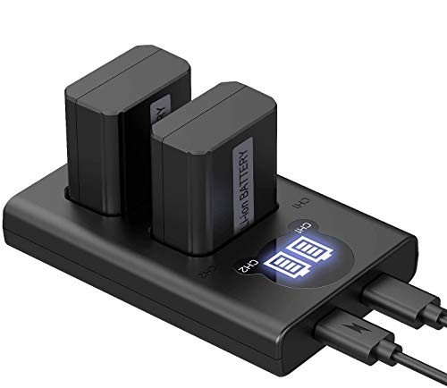 NP-FW50 YXwin Camera Battery Charger Set and Batteries for Sony A6000, A6500, A6300, A7, A7II, A7RII, A7SII, A7S, A7S2, A7R, A7R2, A5100, RX10 Accessories (2-Pack, USB C & Micro USB Ports, 1200mAh)