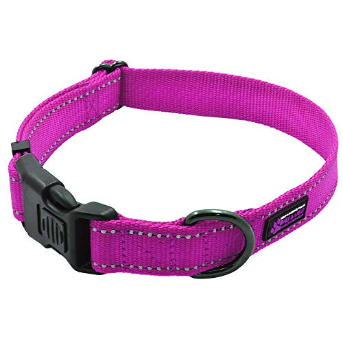Max and Neo NEO Nylon Buckle Reflective Dog Collar - We Donate a Collar to a Dog Rescue for Every Collar Sold (Large, Pink)