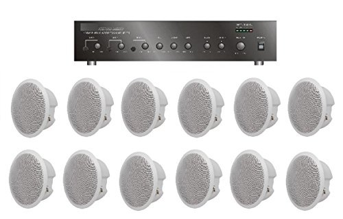 Large Restaurant/Bar/Retail Store Business Background Music Sound System- Amplifier, 12 Speakers +
