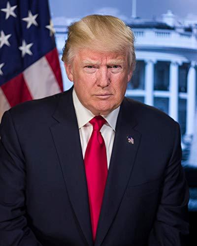 Donald Trump Photograph - Historical Artwork from 2016 - US President Portrait - (4' x 6') - Matte