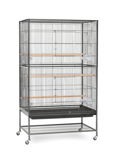 Prevue Hendryx Wrought Iron Flight Cage with Stand F040 Black Bird Cage, 31-Inch by 20-1/2-Inch by 53-Inch, Large