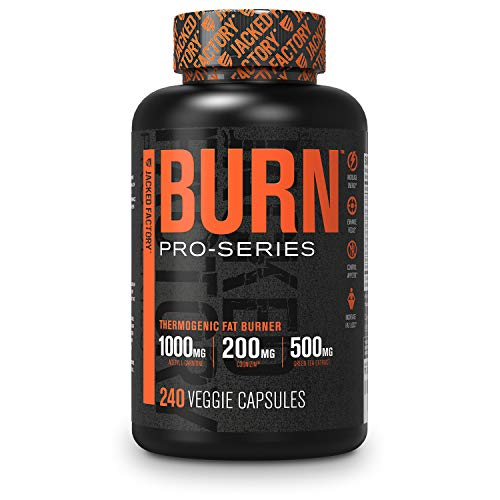 ProSeries Burn Thermogenic Fat Burner - Competition-Grade Weight Loss Supplement, Energy Booster, Appetite Suppressant & Nootropic w/ Cognizin, Capsimax, & More - 60 Sv, 240 Veg Diet Pills