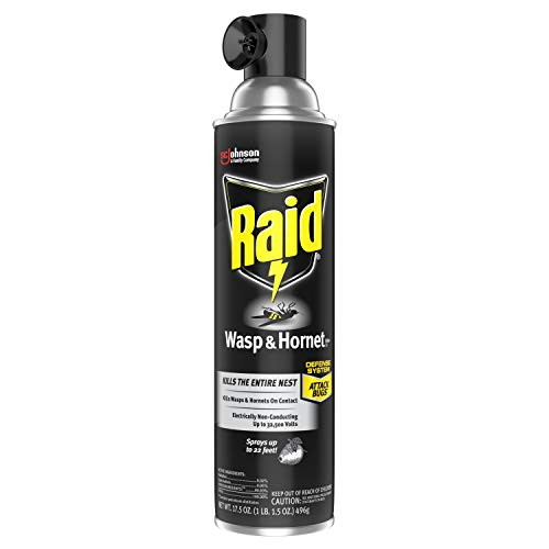 Raid Wasp and Hornet Killer, 17.5 OZ (Pack of 3)
