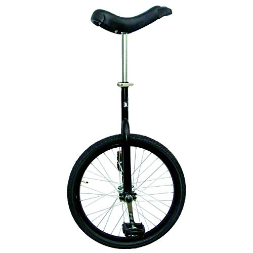 Fun 20 Inch Wheel Unicycle with Alloy Rim, Matte Black