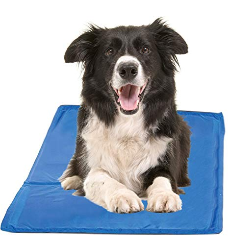 Chillz Cooling Mat For Dogs, Large Size Cool Pad – Pressure Activated Gel Dog Cooling Mat – No Electricity or Refrigeration Required – Keep Your Pet Cool This Summer – 36 x 20 Inches