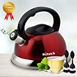 Whistling Tea Kettle 3.3 Qt Tea Pot Stainless Steel Hot Water Teapot for ALL Stovetops 2 FREE Infusers Included,Red