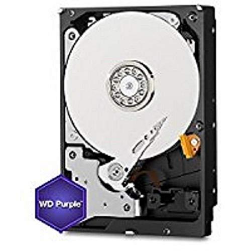 Western Digital Purple 4TB Surveillance Hard Disk Drive - 5400 RPM Class SATA 6 Gb/s 64MB Cache 3.5 Inch - Western Digital40PURZ [Old Version]