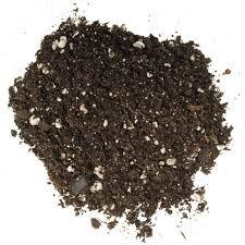 Bonsai Tree Soil All Purpose Blend - 4 Quarts - CZ Grain Brand 100% Organic All Natural Great for Fast Growing Bonsai Trees