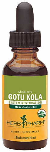 Herb Pharm Certified Organic Gotu Kola Liquid Extract for Musculoskeletal System Support - 1 Ounce