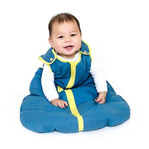Baby Deedee Sleep Nest Sleeping Sack, Warm Baby Sleeping Bag fits Newborns and Infants,Medium (6-18 Months)