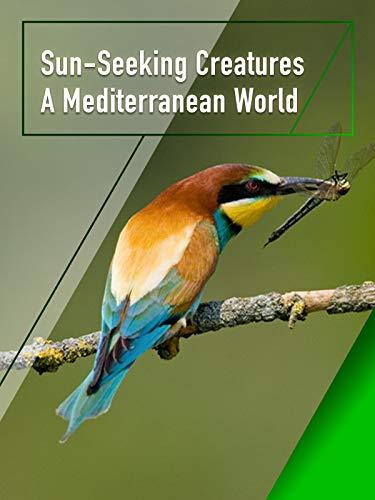 Sun-Seeking Creatures - A Mediterranean World