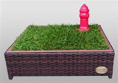 Porch Potty Small, Outer Dimensions 26' x 26' x 6', Grass Area 4 Square Feet (2' x 2')