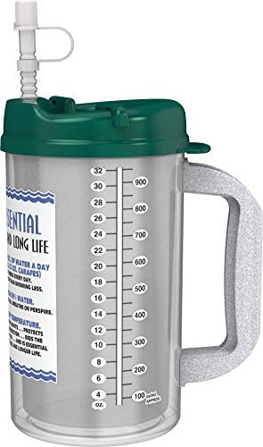 32 oz Insulated W.E. Cold Drink Mug with Electron Jade Lid