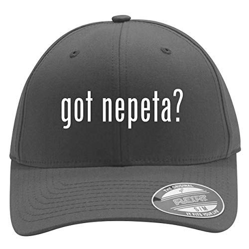 got Nepeta? - Men's Flexfit Baseball Cap Hat, Silver, Large/X-Large