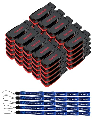 SanDisk Cruzer Blade 16GB (50 Pack) USB 2.0/3.0 Flash Drive Jump Drive Pen Drive SDCZ50-016G - with (25) Everything But Stromboli (tm) Lanyard
