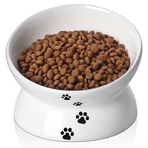Y YHY Cat Bowl,Raised Cat Food Bowls Anti Vomiting,Tilted Elevated Cat Bowl, Ceramic Pet Food Bowl for Flat Faced Cats, Small Dogs,Protect Pet's Spine,Dishwasher Safe