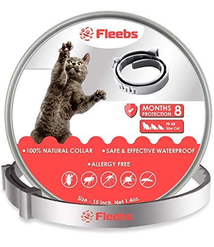 Collier pour chat Fleebs pour une période de validité de 8 mois Colliers réglables pour collier pour chat chaton Convient à tous les chats