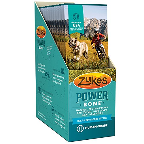 Power Bone Beef & Blueberry Recipe Dog Treat Single Serve Display Box (12 Count)