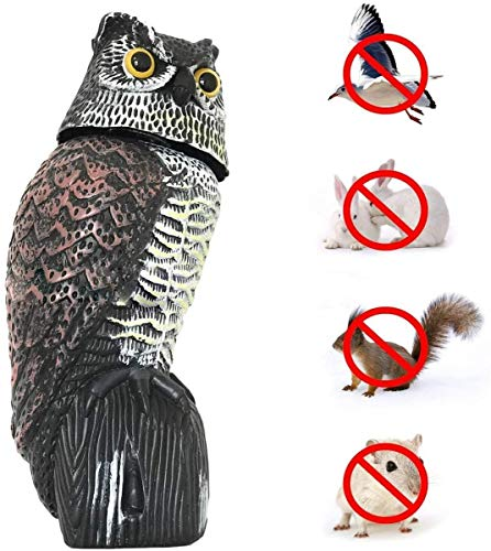 Owl Decoy to Scare Birds Away Scarecrow Fake Owl with Rotating Head & Scary Sounds